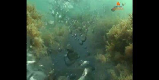 morje-pripoveduje
